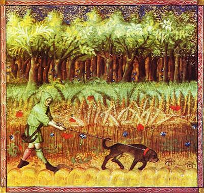 """Del """"Libro de la Caza"""", de Gaston Phebus, conde de Foix."""