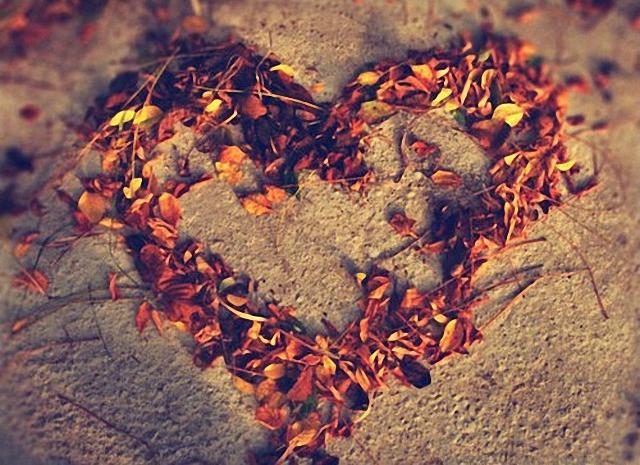 Haciendo un corazón con pétalos de flores