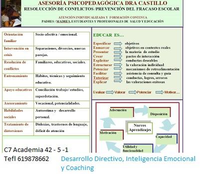 Asesoría psicopedagógica Dra.Castillo