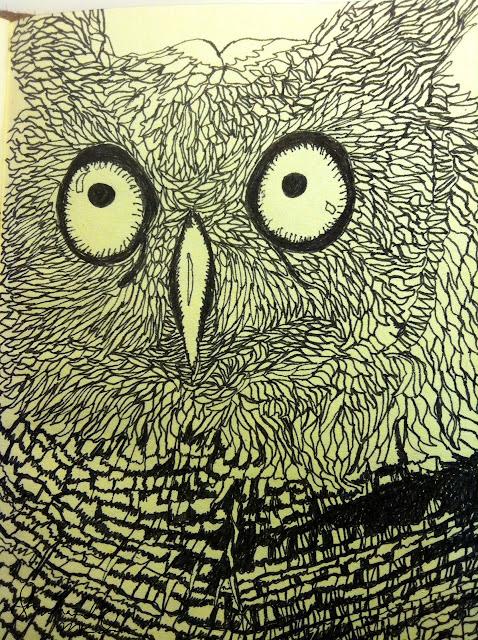 owl by shoshanah marohn 2016