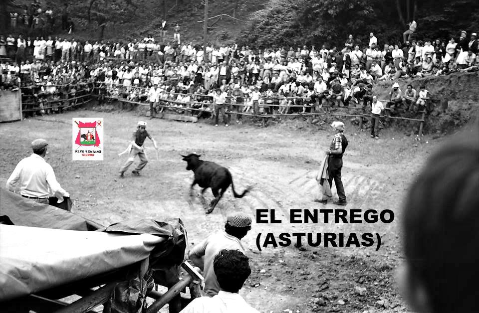 EL ENTREGO ASTURIAS TOROS
