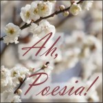 Ah, Poesia! Blog e Poesias