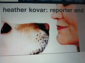 heather kovar: reporter and her dog in new york city