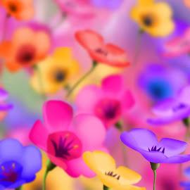 Gambar warna-warni indah