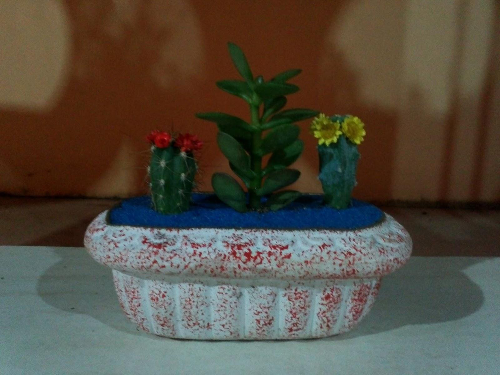 mini jardins em vaso:Inovando com Cactos e Suculentas.: Mini Jardim em vaso de cerâmica.