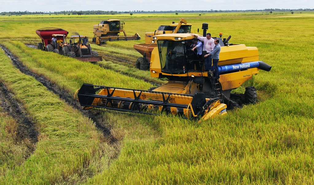 Projeto de irrigação Salangô em São Mateus do Maranhão