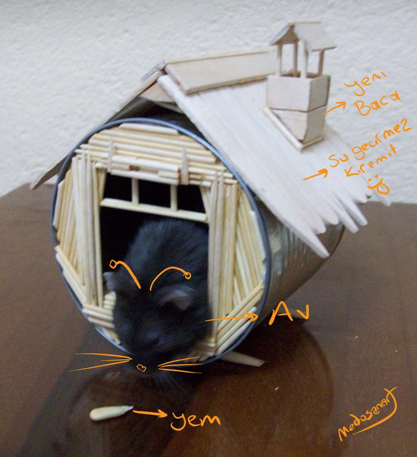 Kürdan hamster yuvası - medosanart