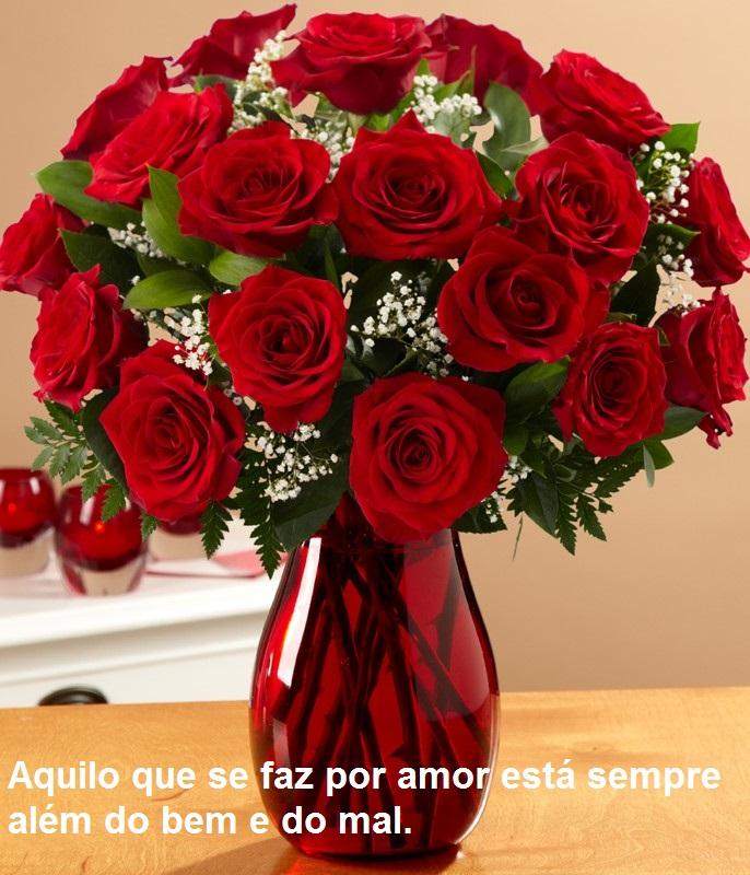 Tag Imagens De Rosas Vermelhas Com Frases De Bom Dia