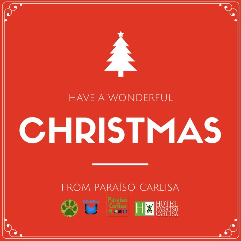 www.paraisocarlisa.com