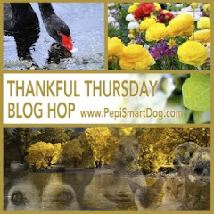The Thankful Thursday Blog Hop