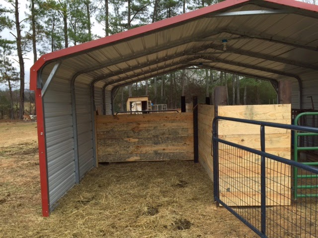 My barefoot farm the clampett phenomena for Inexpensive barns