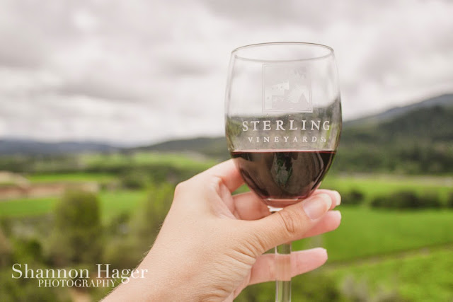 Shannon Hager Photography, Napa, Sterling Vineyards