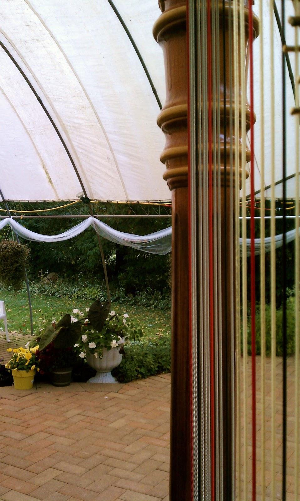 Indiana Wedding Harpist International Friendship Gardens