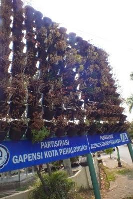 Tanaman Taman Vertikal Mati Kekeringan