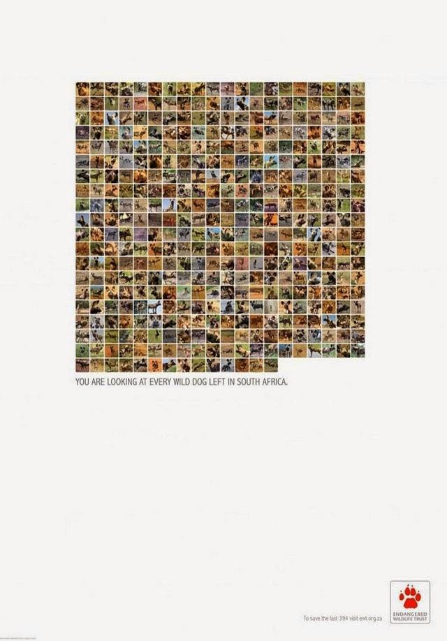 wildlife-ads-3