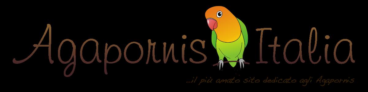 Agapornis: AgapornisItalia.com il sito dei pappagallini inseparabili