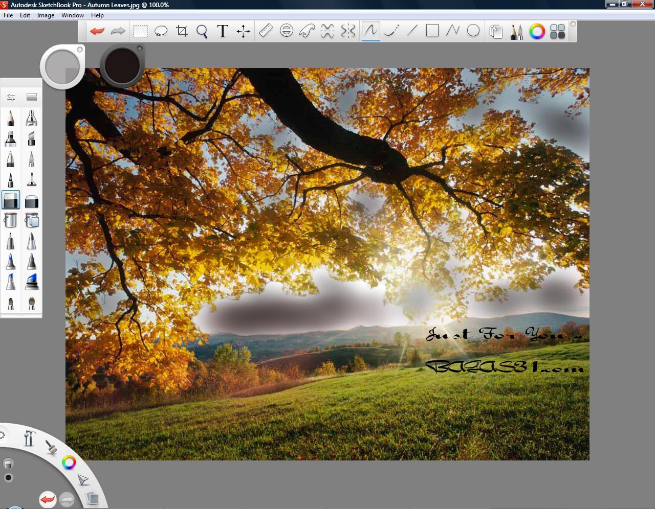 Autodesk Sketchbook Pro 2012 v6.0.1 Full Serial - BAGAS31.com