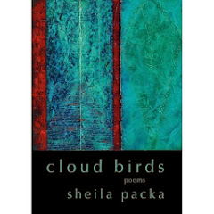 Cloud Birds by Sheila Packa