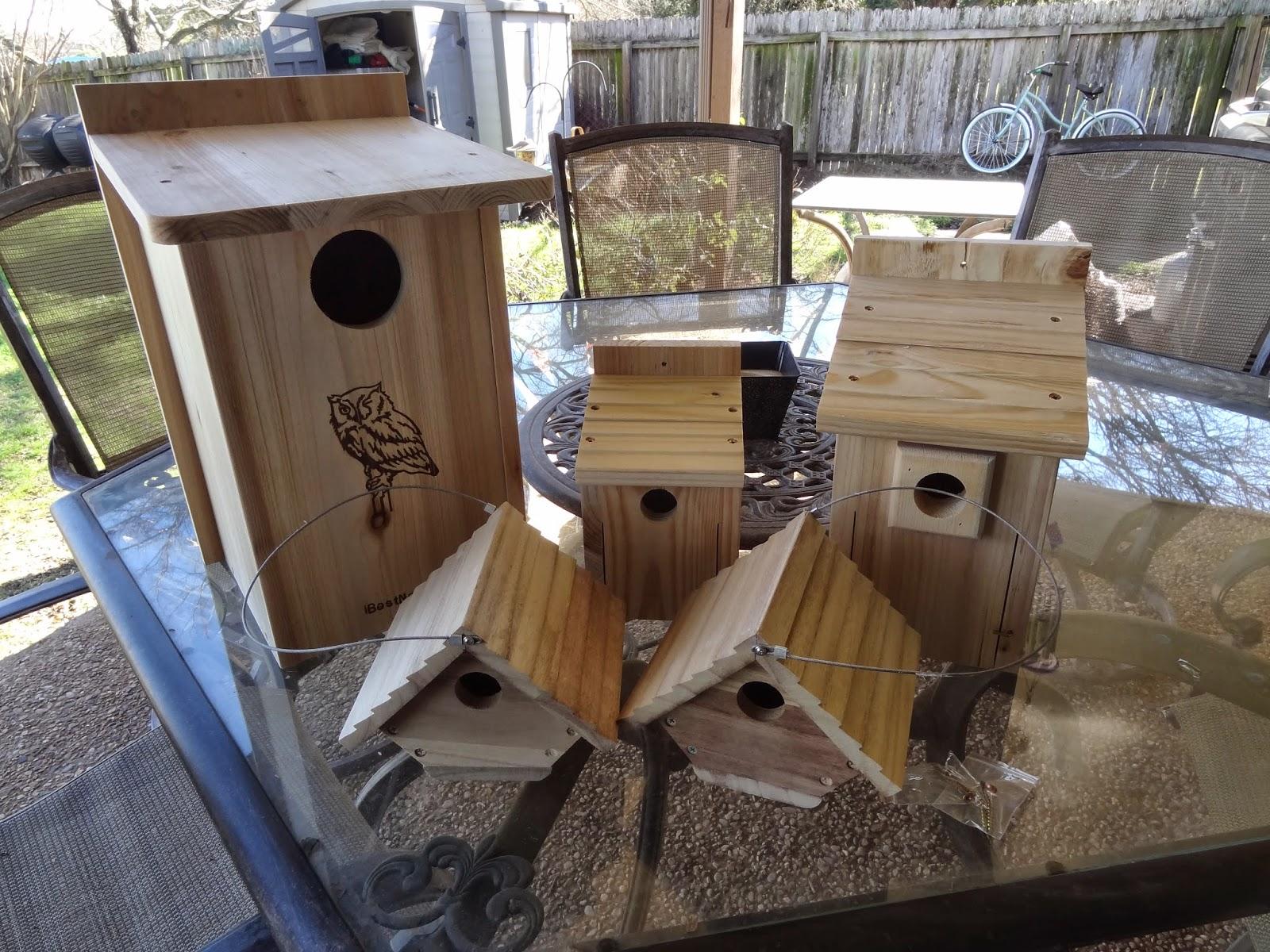Rebecca\'s Texas Garden: For the Birds