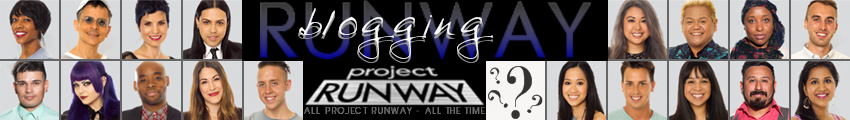 Blogging Project Runway ~