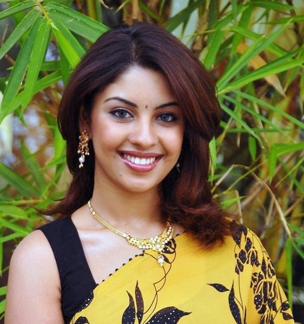 richa gangopadhyay in saree hot photoshoot
