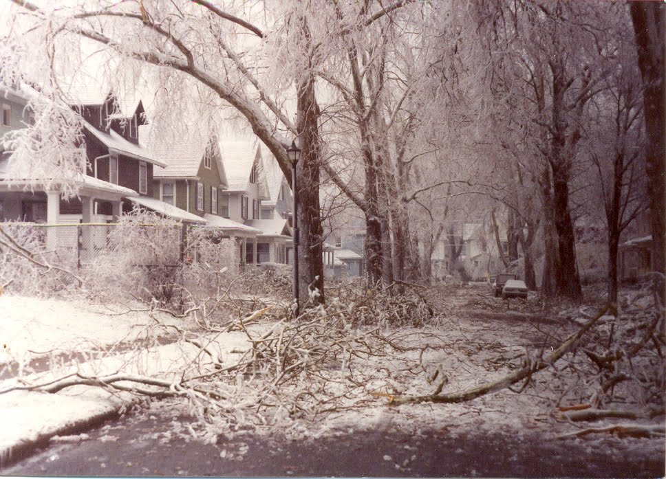the damages and results of the halloween storm 1991 Air masses often results in massive storms just offshore of north america  total  damage in the halloween storm, as it came to be known.