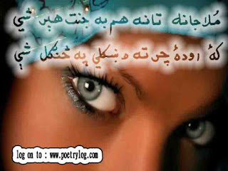 Elegant Design Pashto Poetry