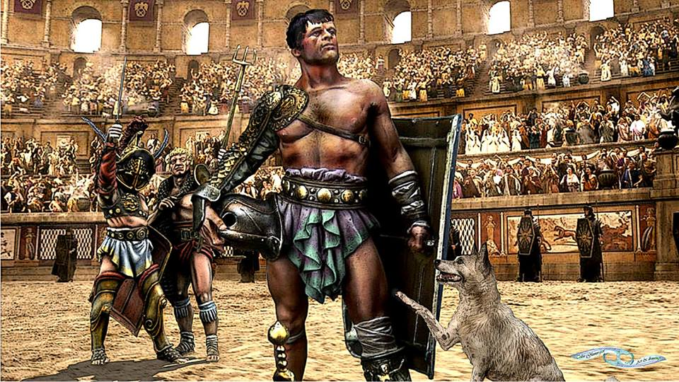 gladiator vs history Comparison from the movie to actual history similarities and differences topics: ancient rome gladiator movie vs history essay.