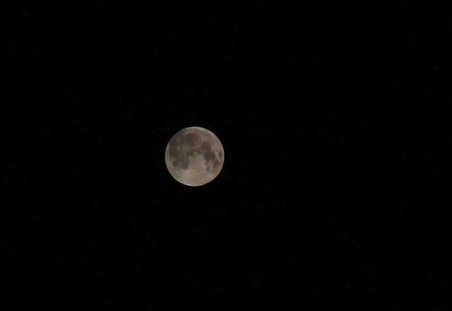 luna piena eclissi