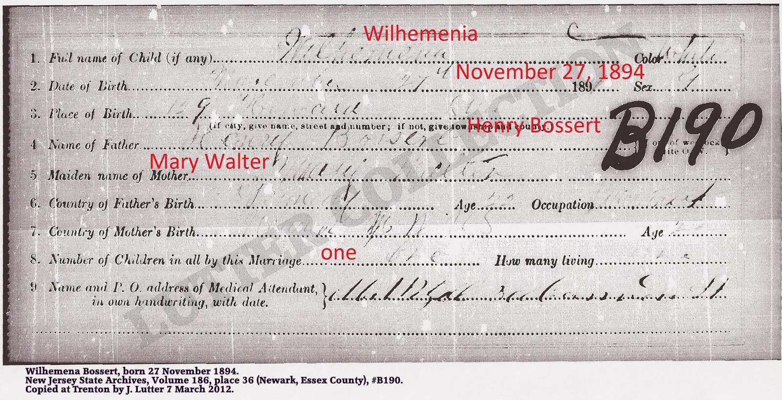Family history research by jody delayed birth certificates delayed birth certificate for george cowenhoven duryee born in hudson county october 23 1899 aiddatafo Choice Image