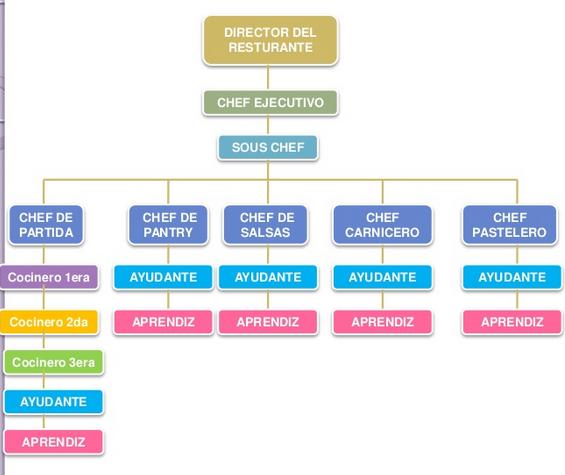Cocina industrial y sus funciones for Utensilios de cocina y sus funciones pdf
