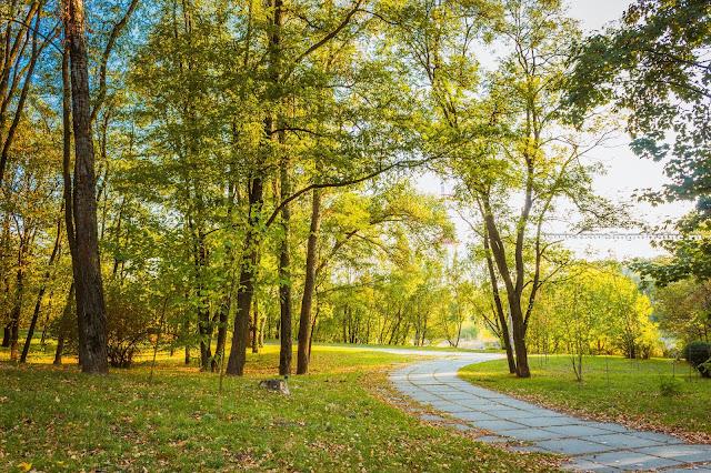 парк Бабий Яр