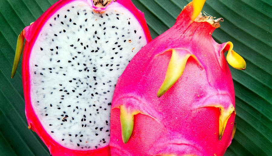 Dragon Fruit