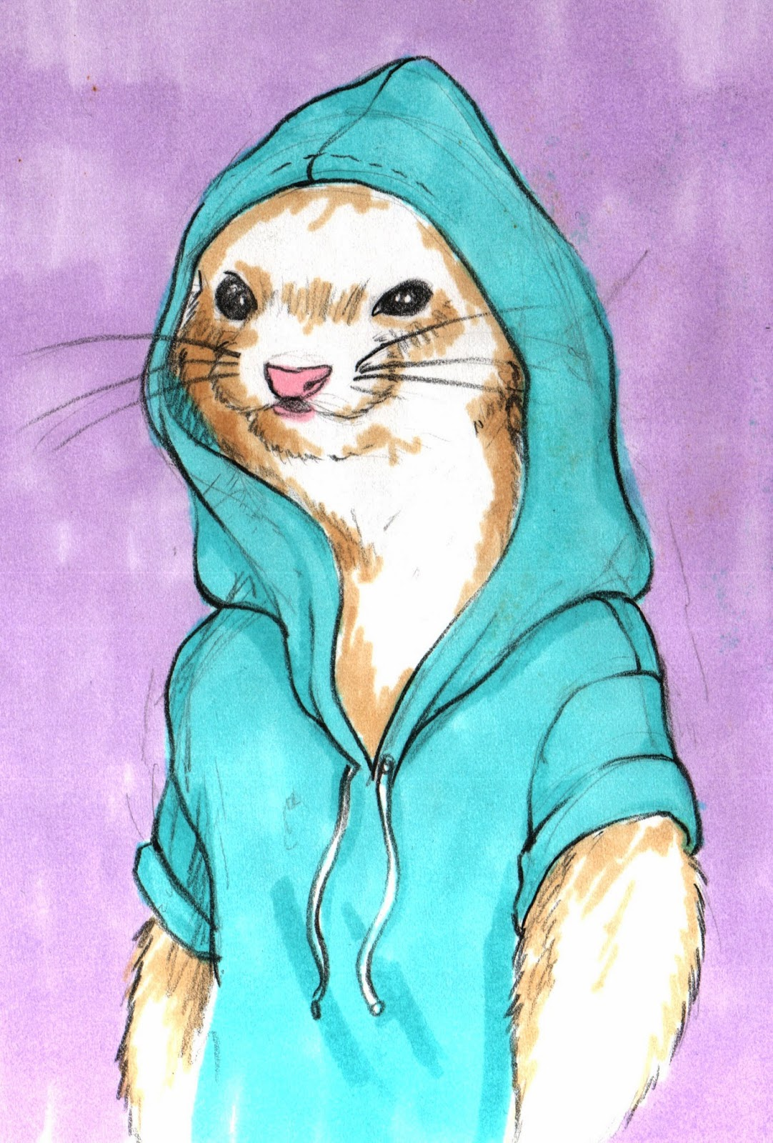 ferret-clothing, ferret-accessories, ferret-hoodie, ferret-depot
