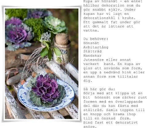 blomsterkupa