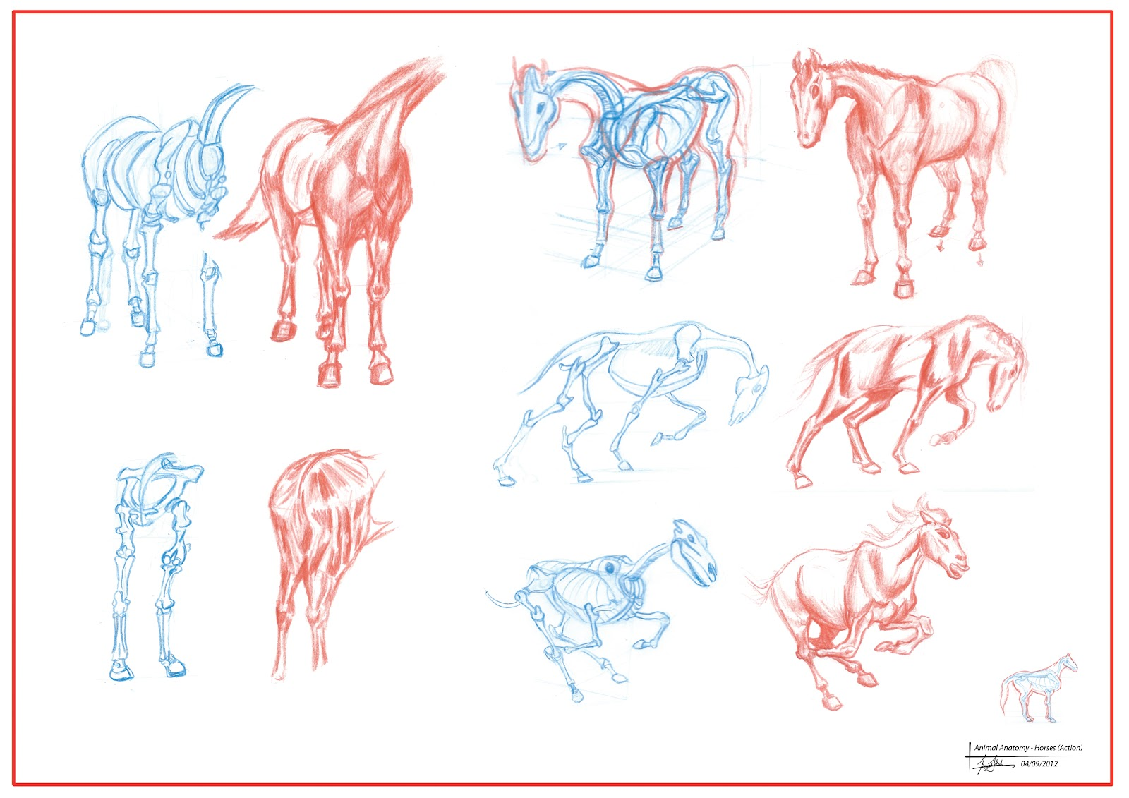 Perfect George Stubbs The Anatomy Of The Horse Ideas - Human Anatomy ...
