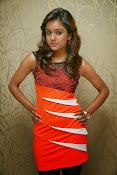 Vithika sheru latest Glamorous Photos Gallery-thumbnail-17