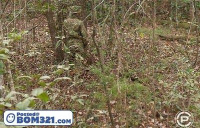 Kehebatan Askar Bila Bersembunyi