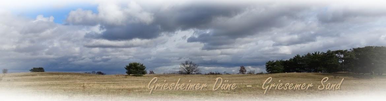 """""""Griesheimer Düne"""""""