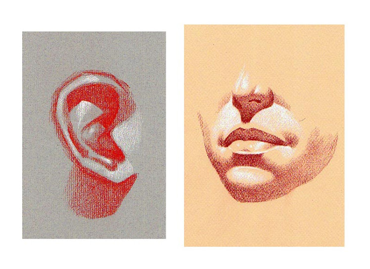 """ Sanguine drawing studies of the ear, nose, mouth & chin "" 2008"
