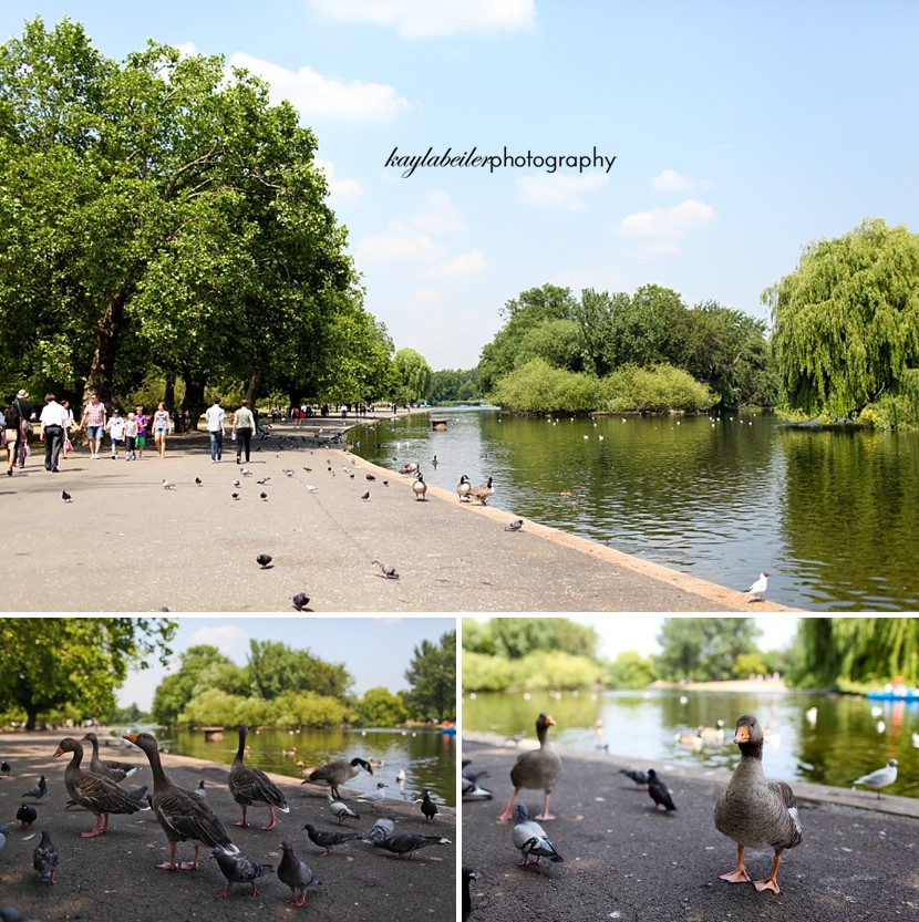 parks in london photo