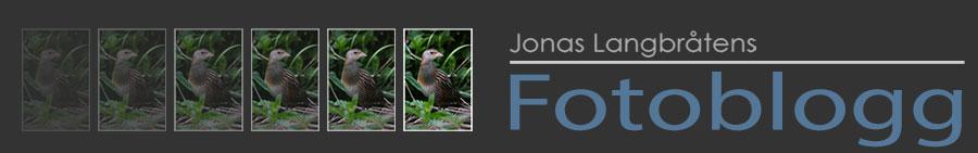 Jonas Langbråtens fotoblogg