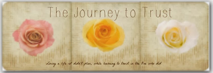 The Journey to Trust