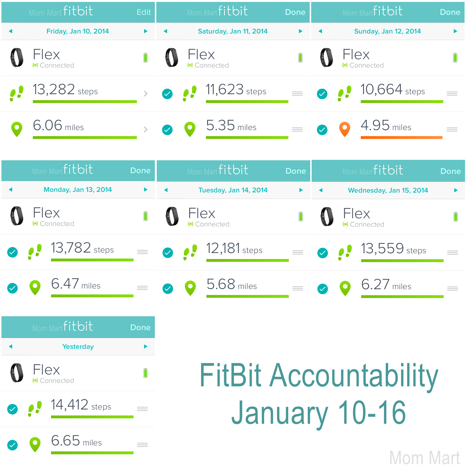 FitBit Flex Accountability Weekly Weight Loss Tracking