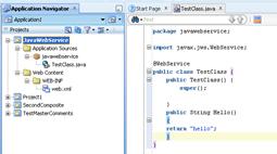 Final Java Web Service