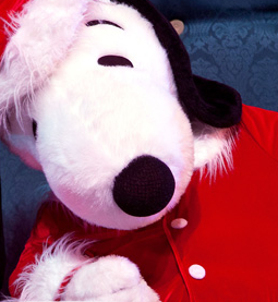 #KnottsNYE  Knott's Berry Farm New Year's Eve Snoopy