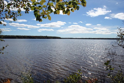 Big Trout Lake, Trout Lake, MI