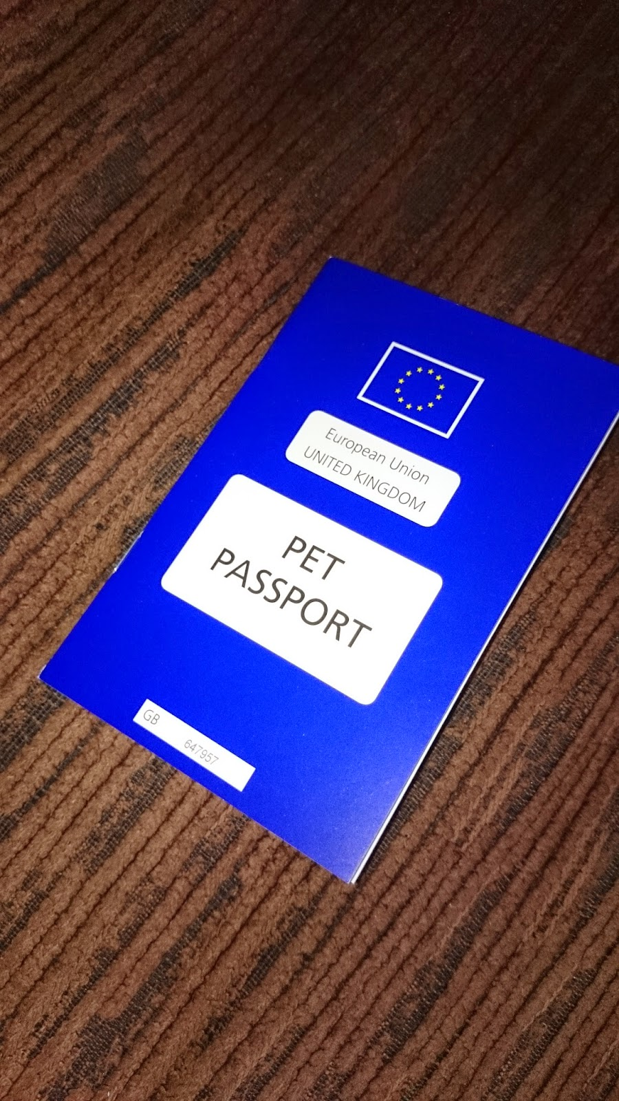 dog travel france europe pet passport vaccination microchip