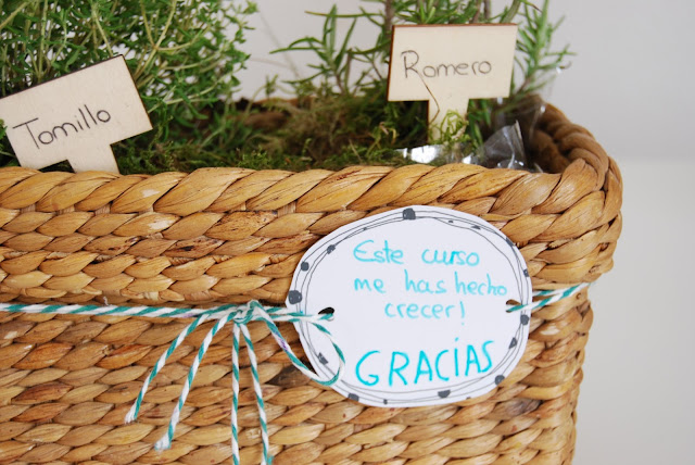 Pequeño huerto de aromáticas para hacer con niños y regalar