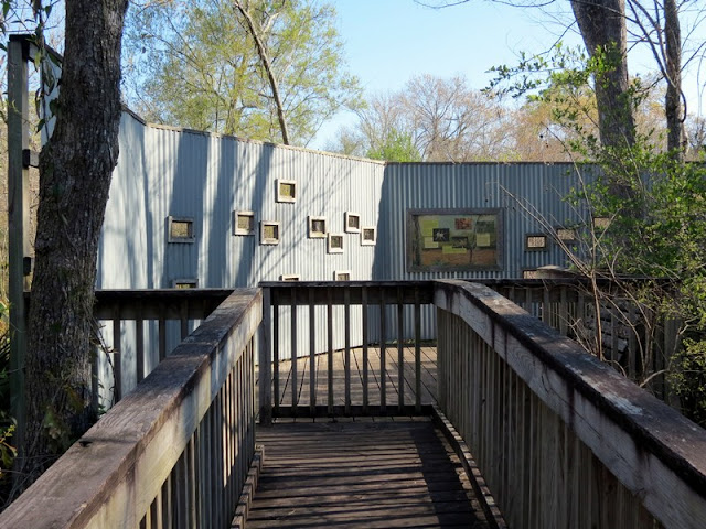 Armand Bayou Nature Center wildlife observation platform.